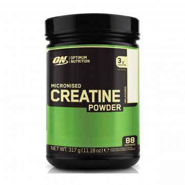 OPTIMUM NUTRITION Micronized Creatine 317gr
