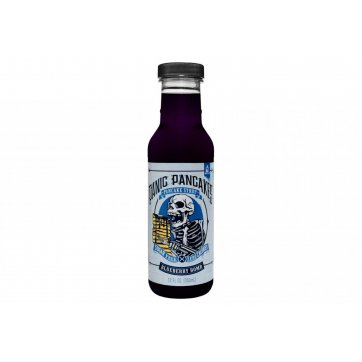 SINISTER LABS Pancake Syrup Blueberry 355ml
